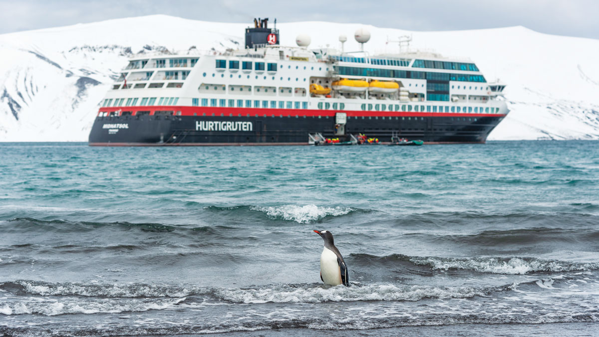 Deception島畔的Hurtigruten Midnatsol號遊輪 巴布亞企鵝 南極洲
