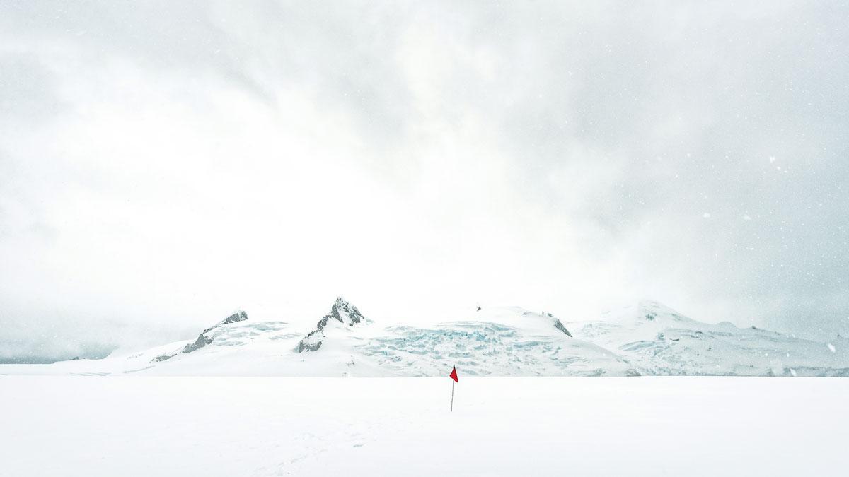 Neko島上 南極洲