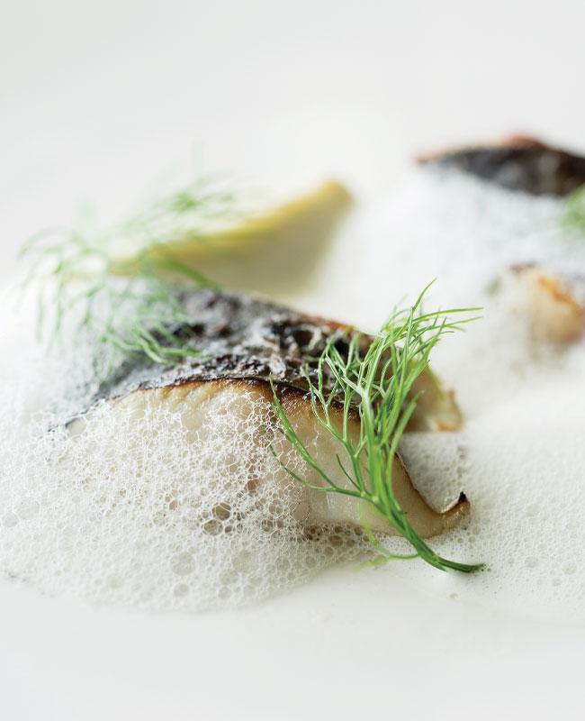 Chef-John-Vincent-Troiano Frilu